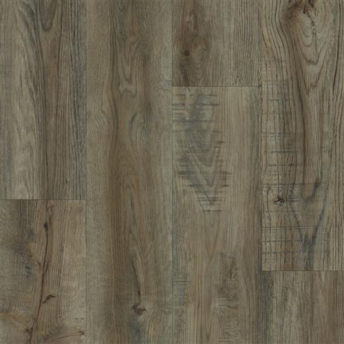 Aqua Shield DS-100 color Colonial Oak