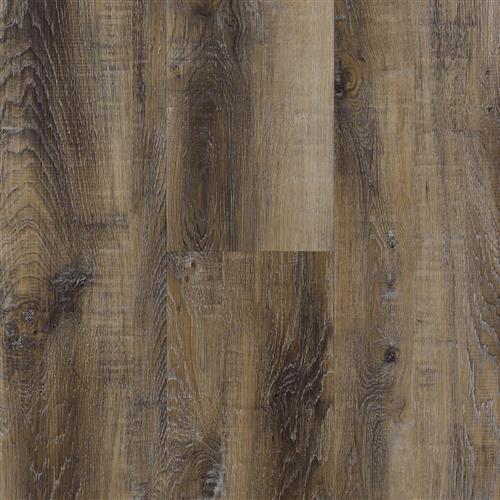 Aqua Shield DS-101 color Driftwood